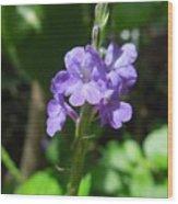 Tiny Purple Blooms Wood Print