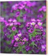 Tiny Purple Flowers Wood Print