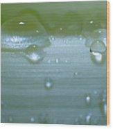Tiny Water Drops On Stipe Wood Print