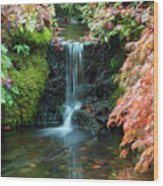 Tiny Waterfall In Japanese  Garden.the Butchart Gardens,victoria.canada. Wood Print