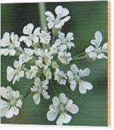 Tiny White Wood Print