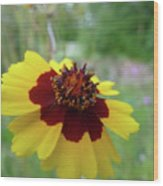 Tiny Yellow Flower Wood Print