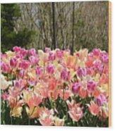 Tiptoe Among The Tulips Wood Print