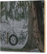 Tire Swing In Winter Wood Print