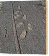 Tire Tracks And Foot Prints Wood Print