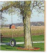 Tree Tire Swing  Wood Print