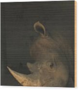 Tired Rhino Wood Print