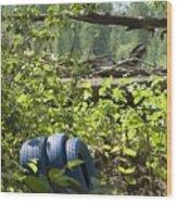 Tires Blue Wood Print