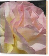 Tissue Paper Rose Wood Print