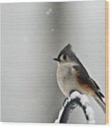 Titmouse On Snowy Arch Wood Print