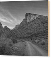 Titus Canyon Road Wood Print by Peter Tellone