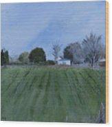 Tiverton Pasture Wood Print
