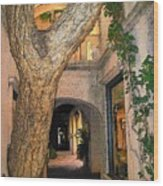 Tlaquepaque Village Tree   Wood Print