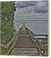 A Walk To The Sea Wood Print