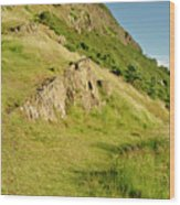 To The Top Of Arthur's Seat. Wood Print