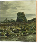 To Walk Alone Along Rocky Shores Wood Print