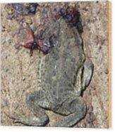 Toad Road 3 Wood Print