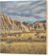 Toadstool Geologic Park Wood Print