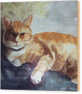 Toby The Best Cat Ever Wood Print