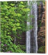 Toccoa Falls In Georgia Wood Print