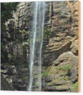 Toccoa Falls Wood Print