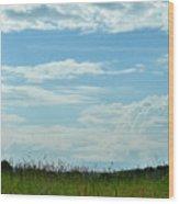 Todays Art 1405 Wood Print