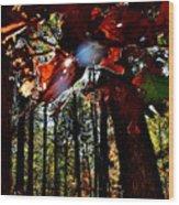 Todays Art 203 Wood Print