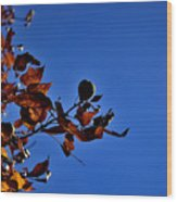 Todays Art 205 Wood Print