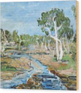 Todd River Wood Print