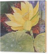 Tohopekaliga Lotus 2 Wood Print