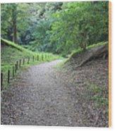 Tokyo Park Path Wood Print