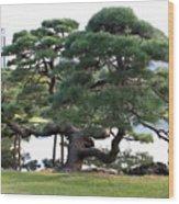 Tokyo Tree Wood Print