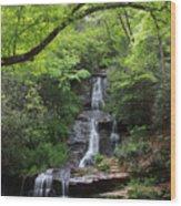 Tom Branch Falls - Gsmnp Wood Print