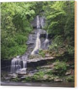 Tom Branch Falls Wood Print