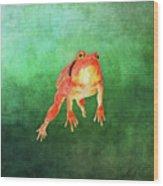 Tomato Frog Wood Print