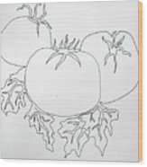 Tomatoes On A Vine In One Line Wood Print