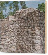 Tombs At Oxtankah Wood Print