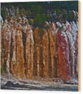 Tombs Land Formation Wood Print