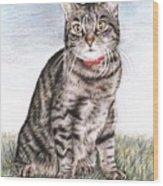 Tomcat Max Wood Print