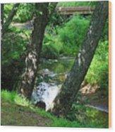 Toms Creek In Summer 3 Wood Print