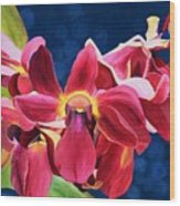 Tom's Orchid Wood Print