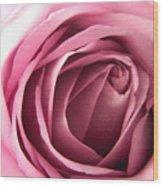 Toni's Rose  Wood Print