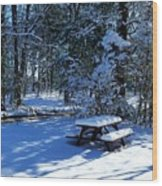 Too Cold To Picnic Wood Print