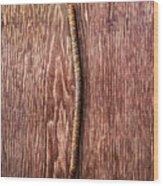Tools On Wood 54 Wood Print