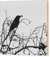 Top Bird Wood Print