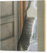 Tip Toe Cat Wood Print