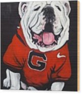 Top Dawg Wood Print by Pete Maier