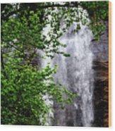 Top Half Of Toccoa Falls Wood Print