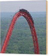 Top Of Intimidator 305 Rollercoaster Wood Print