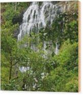 Top Of Munson Creek Falls Wood Print